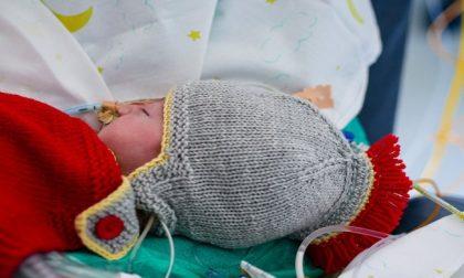 I piccoli guerrieri della terapia intensiva neonatale del Niguarda con i costumini di Carnevale