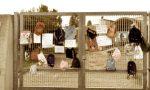 No dad, genitori e bambini protestano: zaini attaccati ai cancelli della scuola