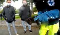 Gattino incastrato nel cofano di un'auto salvato dal volontario di Enpa Milano