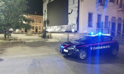 """Pitbull usato come """"arma da rapina"""" scagliato contro le vittime (e i Carabinieri)"""