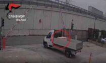 Importano dalla Spagna 256 chili di droga nascosti nel mangime per animali