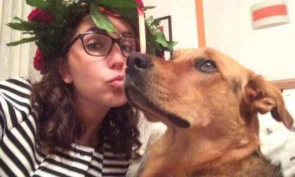 """Cane in overdose per aver mangiato un panetto di hashish: """"I pusher hanno ucciso Margot"""""""