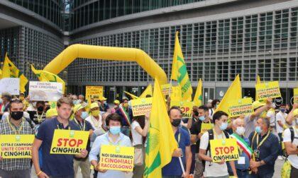 Emergenza cinghiali: centinaia di agricoltori in protesta sotto il Palazzo della Regione
