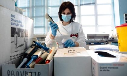 Studio del Niguarda: a sei mesi dal vaccino anticorpi ancora presenti